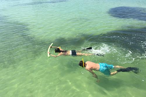 egmont key adventures snorkeling sightseeing around anna maria island