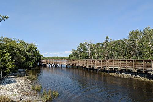 perico preserve near anna maria island trails
